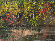Autumn Prints Pastels Posters - Birches at the Bend Poster by Sue Lewis