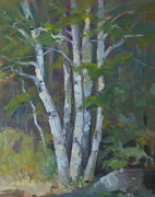 Elaine Hurst - Birches
