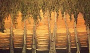 Holly Martinson - Birches in the Sun