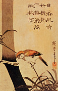 Perch Posters - Bird and Bamboo Poster by Ando or Utagawa Hiroshige