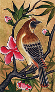 Dave Painting Framed Prints - Bird Framed Print by David Shumate