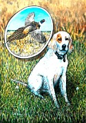 Todd Spaur - Bird Dog