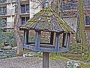 Gatlinburg Posters - 	Bird Feeder Falling				 Poster by Regina Hall