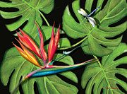 Anne Beverley - Bird of Paradise