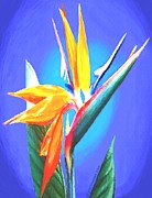Yellow Leaves Pastels Prints - Bird of Paradise Flower Print by SophiaArt Gallery