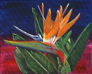 Strelitzia Painting Framed Prints - Bird of Paradise in acrylic Framed Print by Linda Feinberg