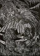 Jeanette K - Bird of Paradise