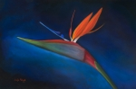 Jennifer Richards - Bird of paradise