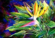 Mary Giacomini - Bird of Paradise