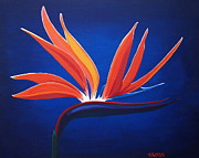 Shiela Gosselin - Bird of Paradise
