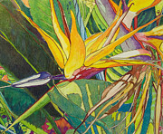 Floral Drawings Originals - Bird of Paradise  by Terry Holliday