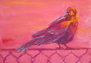Nancy Jolley Art - Bird on a Fence by Nancy Jolley