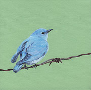 Blue Wings Prints - Bird on a Wire Print by Natasha Denger
