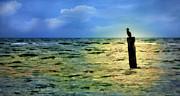 Dan Carmichael - Bird on the Ocean - Outer Banks Seascape