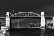 DGS Full Spectrum Photography - Bird Over The Burrard...