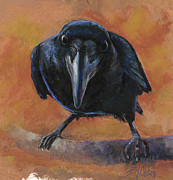 Black Bird Prints - Bird  Watching Print by Billie Colson