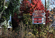 Red Leaves Posters - Birdhouse in New Hope Poster by John Rizzuto