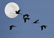 Flocks Posters - Birds and Moon Impasto Poster by Sharon Foster