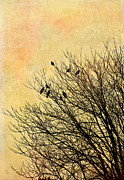 Birds Print by Gynt