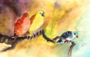 Miki De Goodaboom - Birds in Gran Canaria 02