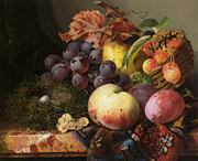 Fruit And Wine Metal Prints - Birds Nest Butterfly And Fruit Basket Metal Print by Edward Ladell