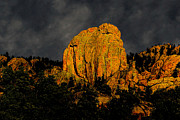 Colorado Mountain Prints Prints - Birds of a Feather Print by Jon Burch