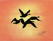 Geese Drawings Prints - Birds of Flight Print by Troy Levesque