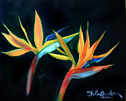 Shelley Overton - Birds of Paradise