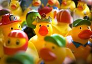 Marilyn Hunt - Birthday Ducks