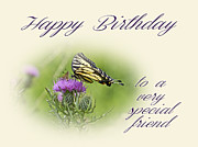 Mother Nature Photos - Birthday Greeting Card - Special Friend - Tiger Swallowtail Butterfly On Thistle by Mother Nature