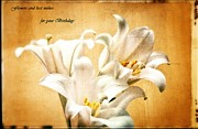 Wishes Posters - Birthday lilies greetings Poster by Eti Reid