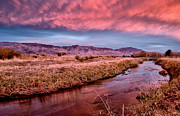 Creek Prints - Bishop Canal Sunset Print by Cat Connor