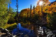 Scott McGuire - Bishop Creek Fall Color...
