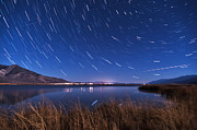 Stars Photos - Bishop Star Trails by Cat Connor