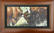 Wrestle Paintings - Bison Brawl FRAMED by Lori Brackett
