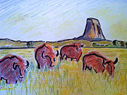 Wyoming Drawings - Bison Group by Janel Houton