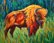 Palette Knife Texture Posters - Bison in Sunlight Poster by Theresa Paden