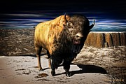 Bison Digital Art - Bison King by D Young Digital Art