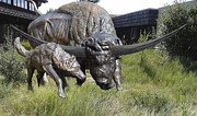 Bison Latifrons And Dire Wolf Print by Peggy Detmers