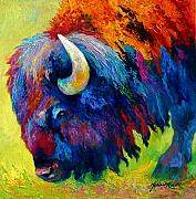 Featured Painting Prints - Bison Portrait II Print by Marion Rose