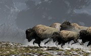 Bison Digital Art Framed Prints - Bison Stampede Framed Print by Daniel Eskridge