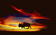 Lansdcape Prints - Bison Sunset  Print by Ann Powell