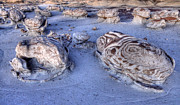 Factory Photos - Bisti/De- Na-Zin Wilderness 11 by Bob Christopher