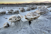 Unusual Landscape Posters - Bisti/De-Na-Zin Wilderness 3 Poster by Bob Christopher