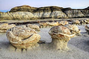 Unusual Landscape Posters - Bisti/De-Na-Zin Wilderness 5 Poster by Bob Christopher