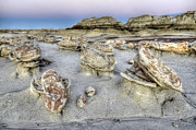 Unusual Landscape Posters - Bisti/De-Na-Zin Wilderness 6 Poster by Bob Christopher