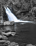 Crazy Prints - Black and Color Waterfall Print by Robert Harmon