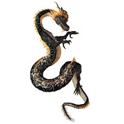 Corey Ford - Black and Gold Dragon