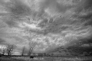 Stormy Skies Acrylic Prints - Black and White Angry Skies Acrylic Print by James Bo Insogna