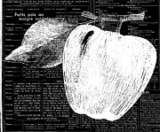 Nyigf Licensing Metal Prints - Black and White Apple on French Recipe Metal Print by Anahi DeCanio
